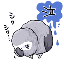 Fuku the Grey Parrot sticker #9542585