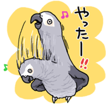 Fuku the Grey Parrot sticker #9542586