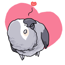 Fuku the Grey Parrot sticker #9542588