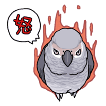 Fuku the Grey Parrot sticker #9542590