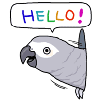 Fuku the Grey Parrot sticker #9542604