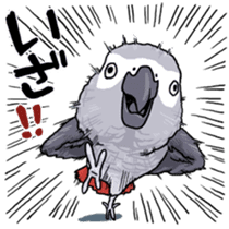 Fuku the Grey Parrot sticker #9542608