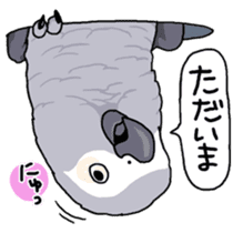Fuku the Grey Parrot sticker #9542609