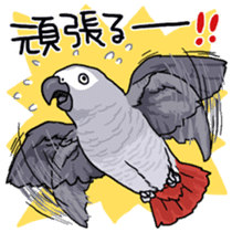 Fuku the Grey Parrot sticker #9542611