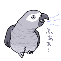 Fuku the Grey Parrot sticker #9542614