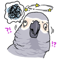 Fuku the Grey Parrot sticker #9542617