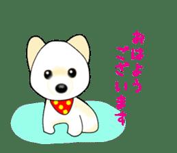 PON.de.Pomeranian3 sticker #9549917
