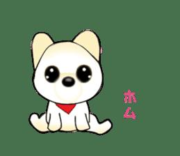 PON.de.Pomeranian3 sticker #9549928