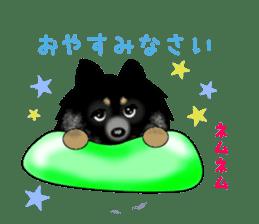 PON.de.Pomeranian3 sticker #9549935