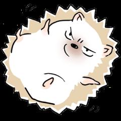 tsundere Hedgehog