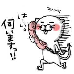 cat@@For nurse