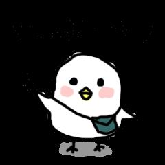Puyo Bird