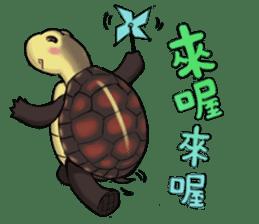 Tortoise diary - Part.3 sticker #9656072