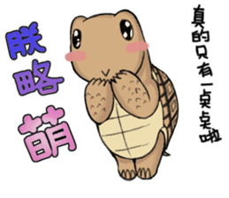 Tortoise diary - Part.3 sticker #9656083