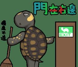Tortoise diary - Part.3 sticker #9656086