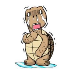 Tortoise diary - Part.3 sticker #9656087
