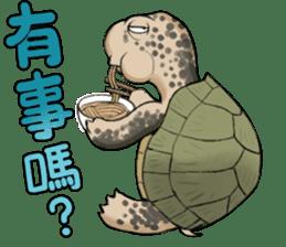 Tortoise diary - Part.3 sticker #9656104