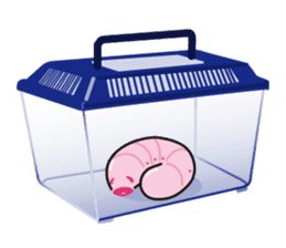Pinkworm (English) sticker #9708445