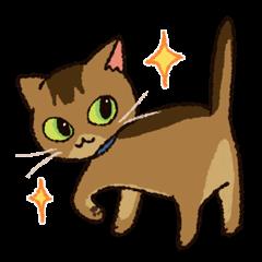 7 cats Sticker