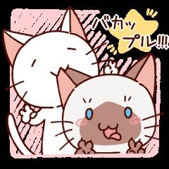 Siamese cat lovebirds!ver.Siamese cat