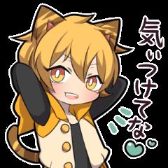 TIGER KITTEN2