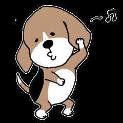Beagle dog bob