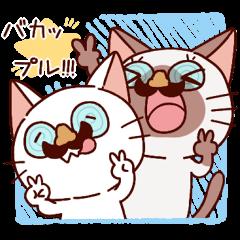 Siamese cat lovebirds!ver.white cat