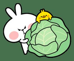 "Spoiled Rabbit ""Spring"" sticker #9846637"