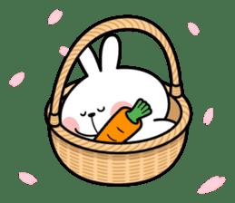 "Spoiled Rabbit ""Spring"" sticker #9846644"