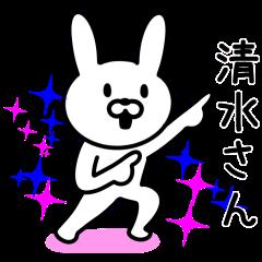 Rabbit for SHIMIZU