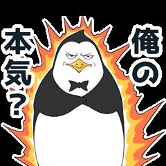 Lazy penguin
