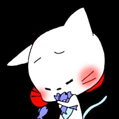 nyasuke
