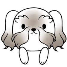 Coco is too cute! sticker #9886423