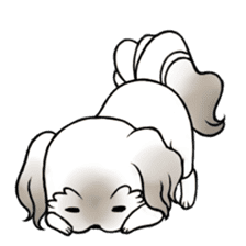 Coco is too cute! sticker #9886433