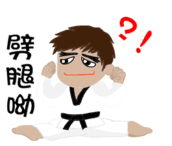 TKD NO1 sticker #9898706