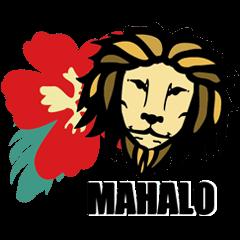 I love Hawaii!Aloha LION