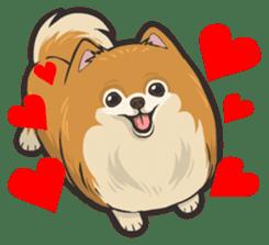 Hi! Pomeranian sticker #9929592