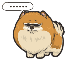 Hi! Pomeranian sticker #9929597