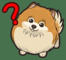 Hi! Pomeranian sticker #9929601