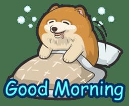 Hi! Pomeranian sticker #9929606