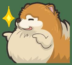 Hi! Pomeranian sticker #9929607