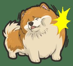 Hi! Pomeranian sticker #9929611