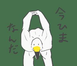 Muscled birds sticker #9935255