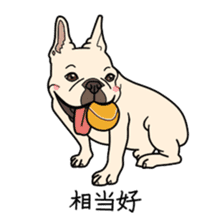 French bulldog  Chinese  Sticker sticker #9936956