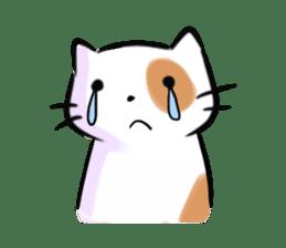 Cookie the Cutest Cat sticker #9944949