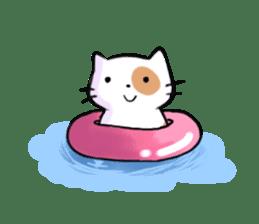Cookie the Cutest Cat sticker #9944970