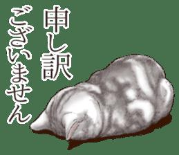 Strange pose cat[ASH] sticker #9952825