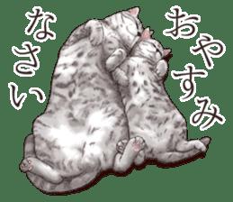 Strange pose cat[ASH] sticker #9952835