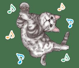 Strange pose cat[ASH] sticker #9952852
