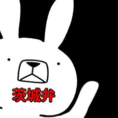 Dialect rabbit [ibaraki2]